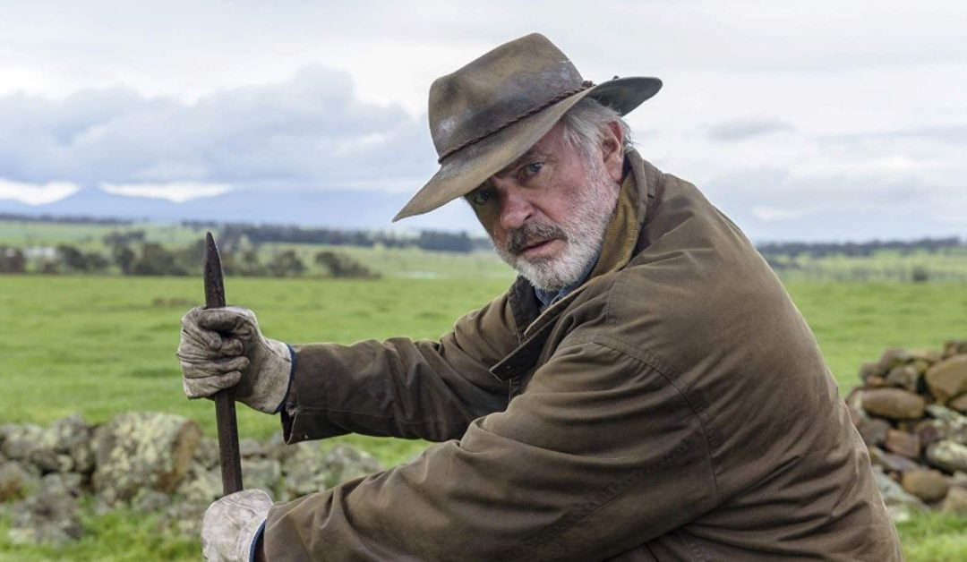 Western Australian Sheep Farming Life the Feature of 'Rams' Remake [Movie Review]