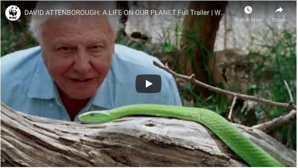 david attenborough a life on our planet trailer